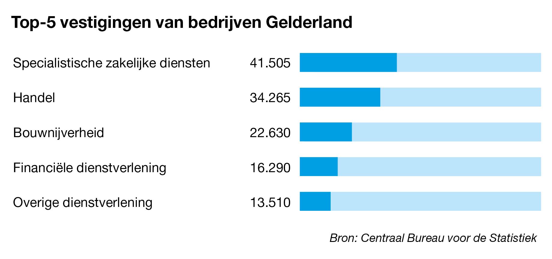 Bedrijven te koop in Gelderland